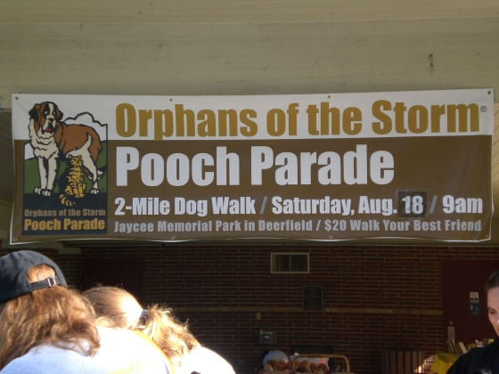 Orphans of the Storm Pooch Parade 1