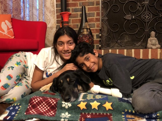 Orphans of the Storm Success Story: Lily 1