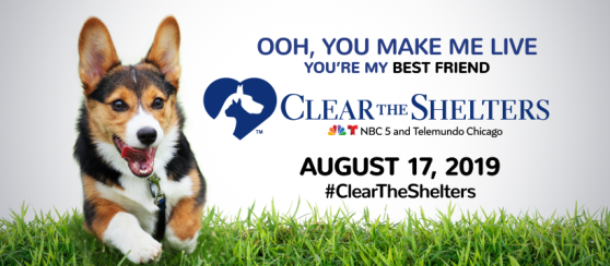 Clear the Shelters banner